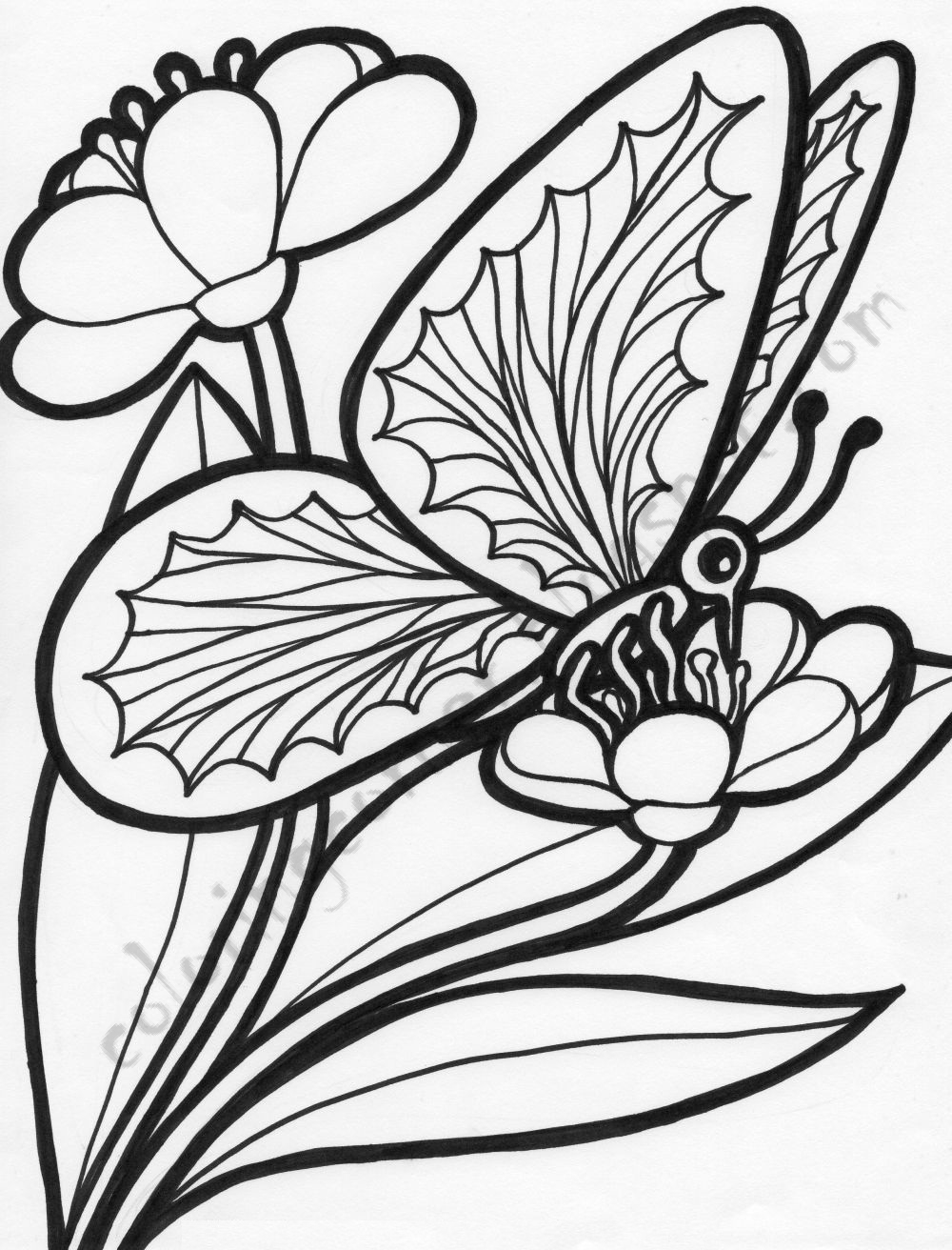 1000x1312 Flowers And Butterflies Coloring Page