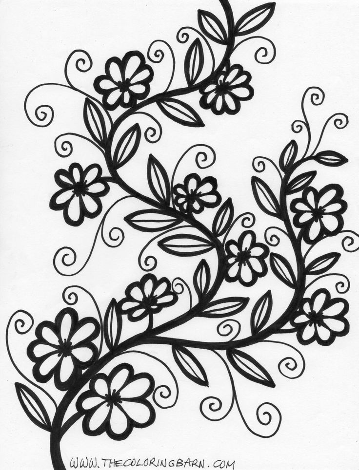 736x965 Tattoo Flower Vine Coloring Page Vine And Branches Coloring Pages