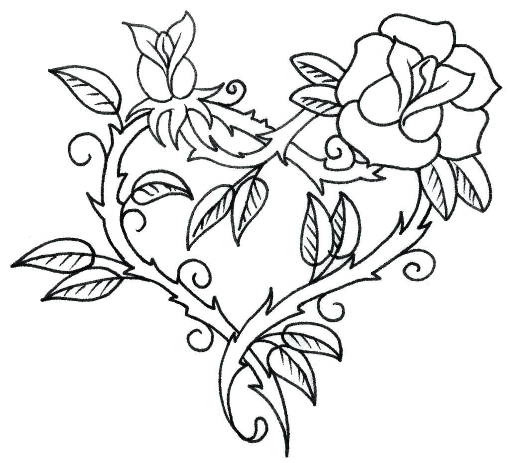 1024x929 Outline Lotus Flower On White Background Stock Vector Flowers