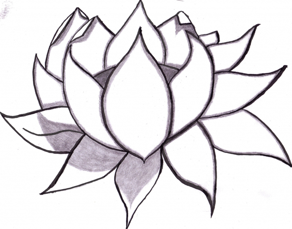 1024x803 Cute Flowers For Drawing