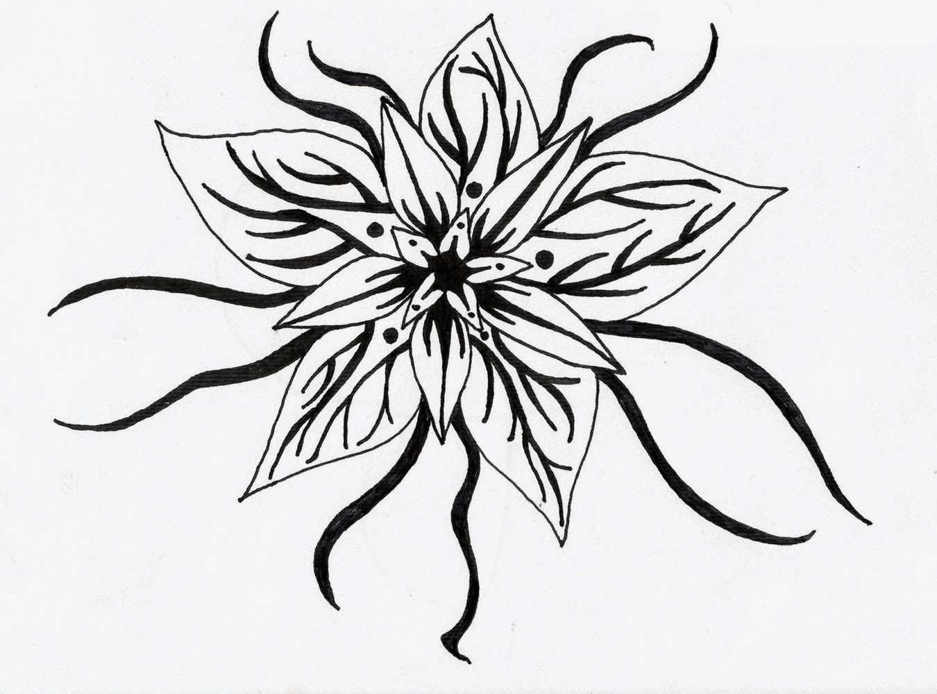 Flowers black and white drawing at getdrawings free for 1350x1000 black and white flower design many flowers mightylinksfo