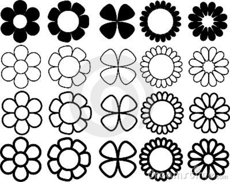 800x634 Flowers Black And White Drawing