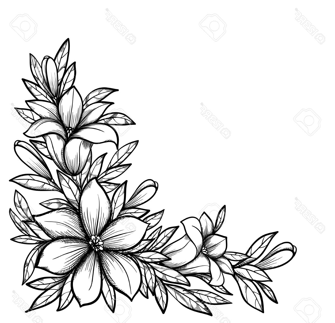 1300x1253 Flowers Drawing White And Black Beautiful Black And White Branch