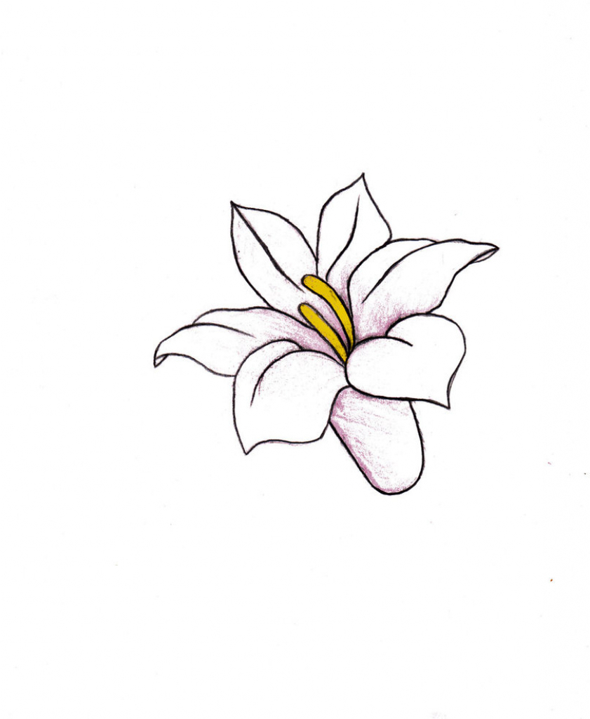 It is an image of Priceless Small Flower Drawing