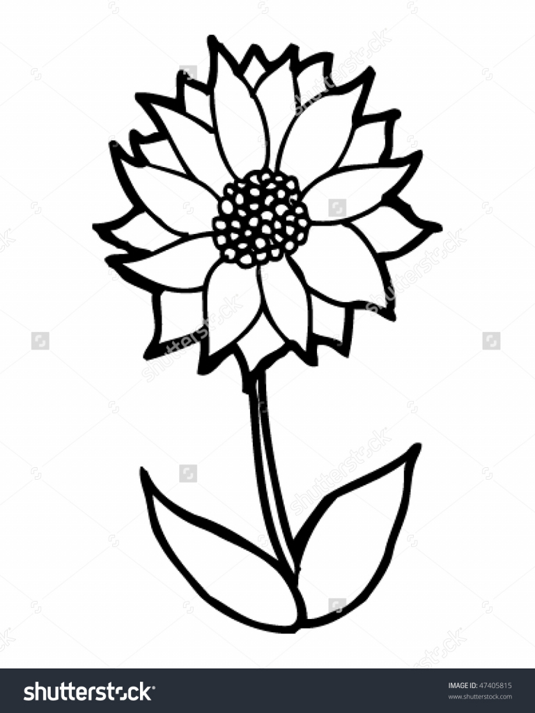 768x1024 Cartoon Flower Drawings Flower Field Drawing Field Of Flowers