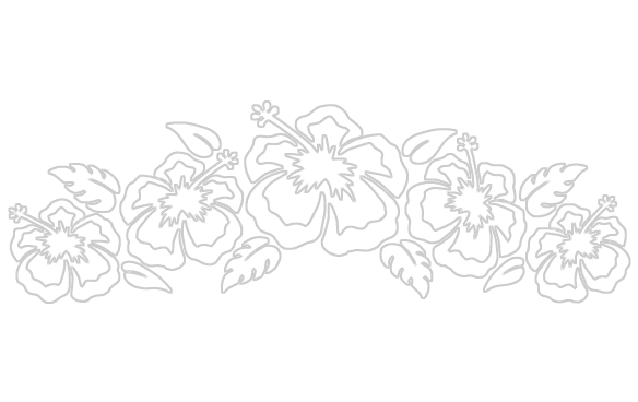 584x368 Flowers Black And White Drawing