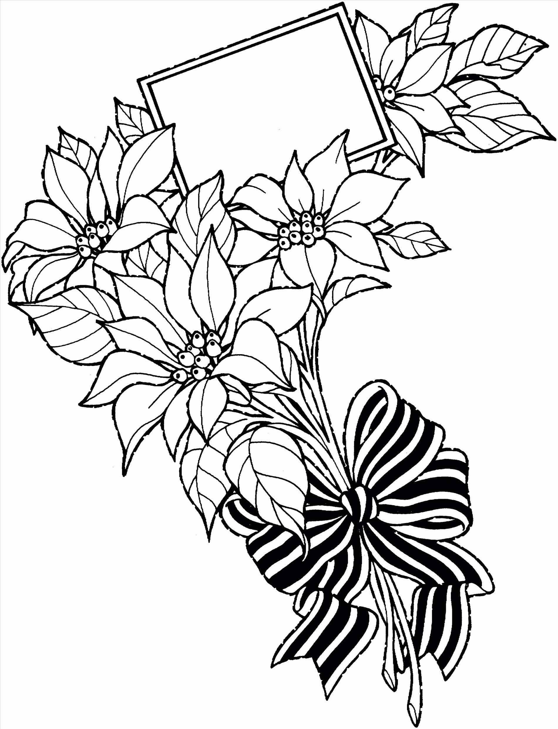 1900x2482 Flowers Drawings Tumblr