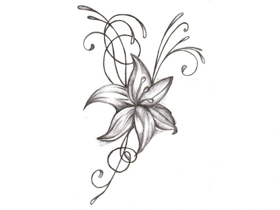 974x731 Coloring Pages Flower Drawing Designs Drawings Pencil Coloring