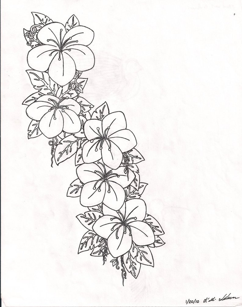 793x1008 Flower Tattoo Outline Designs Elaxsir