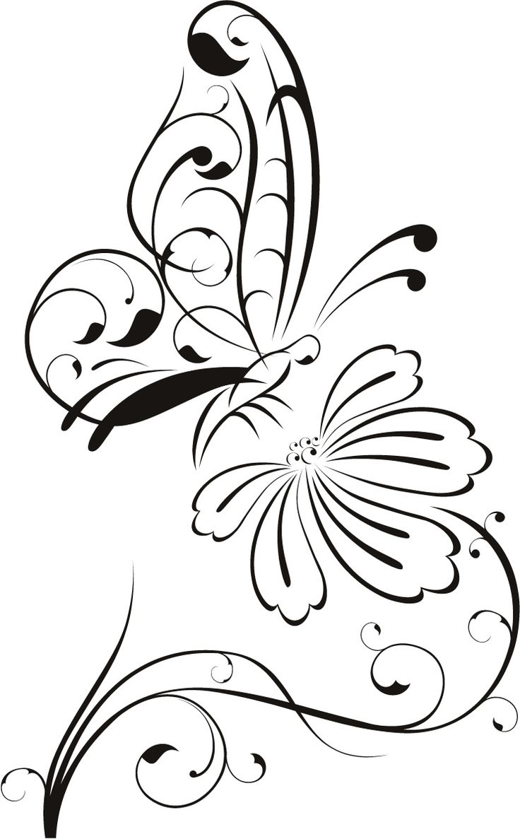 736x1187 Flower Outline Drawing Clipart