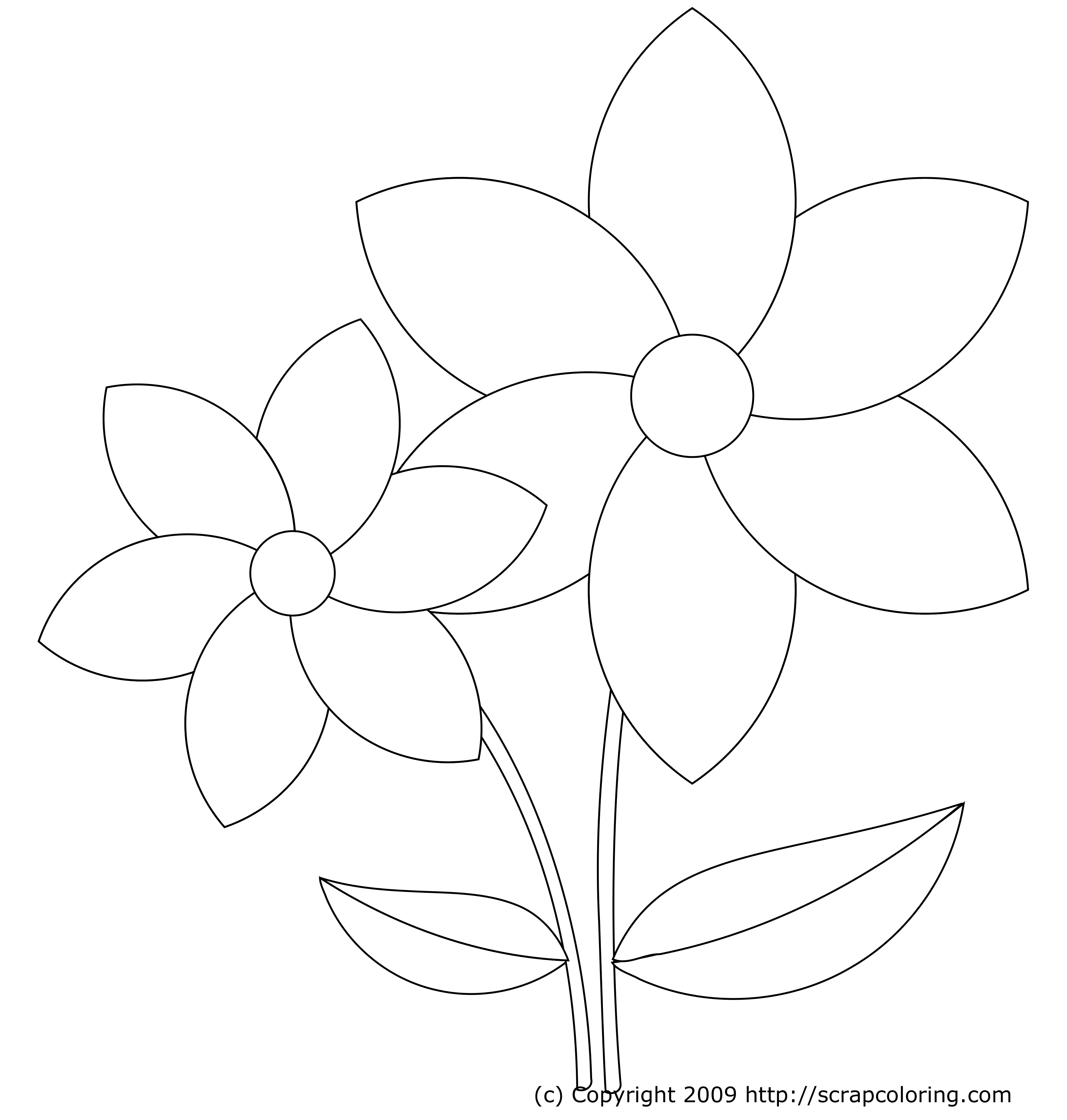 3600x3780 Easy Flower Coloring Page Coloring Pages Draw Easy Flowers
