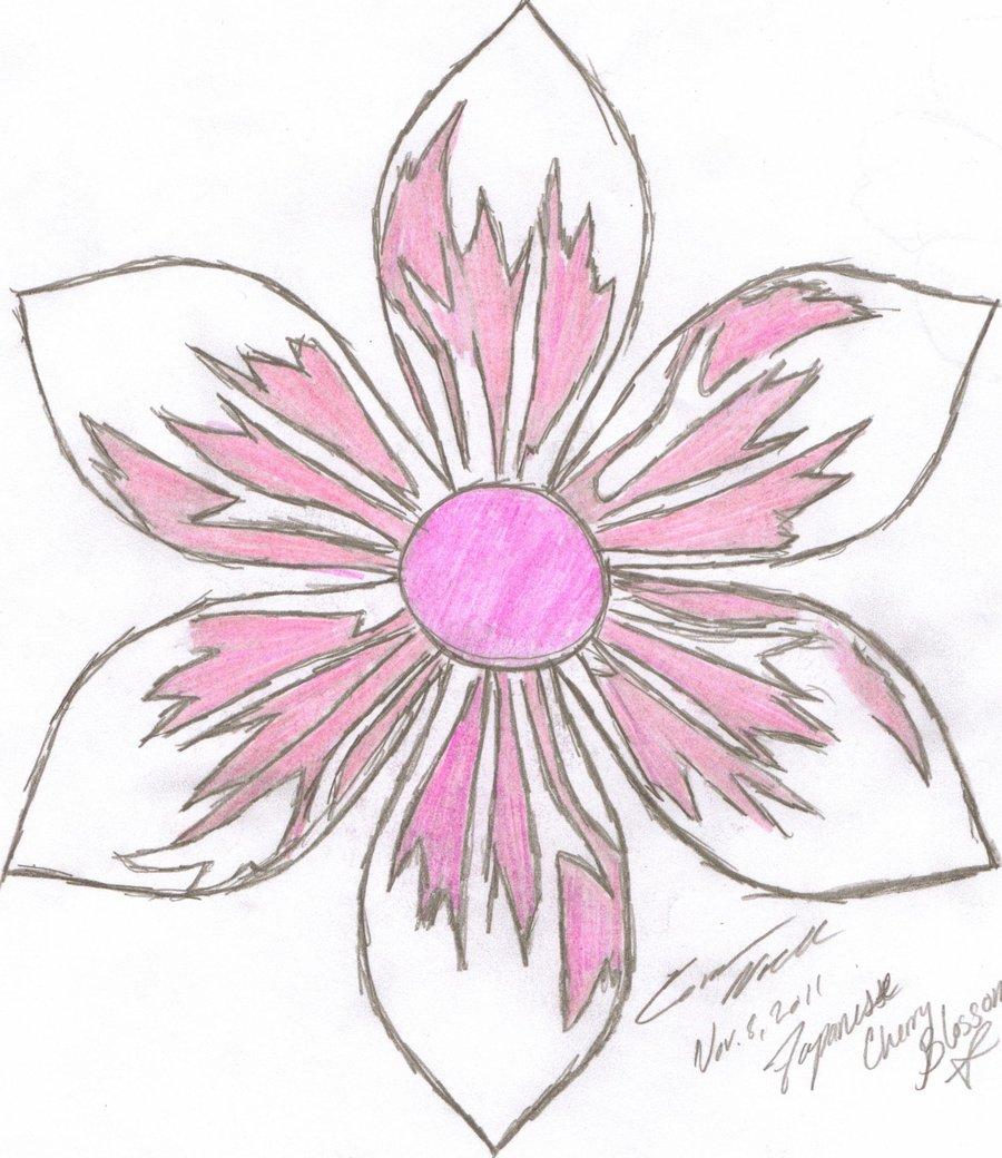 900x1040 Japanese Flowers Drawings