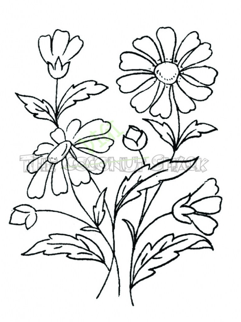 766x1024 Easy Drawings Of Flowers