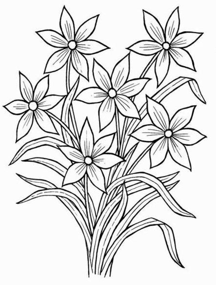 443x583 Drawn Bouquet Simple
