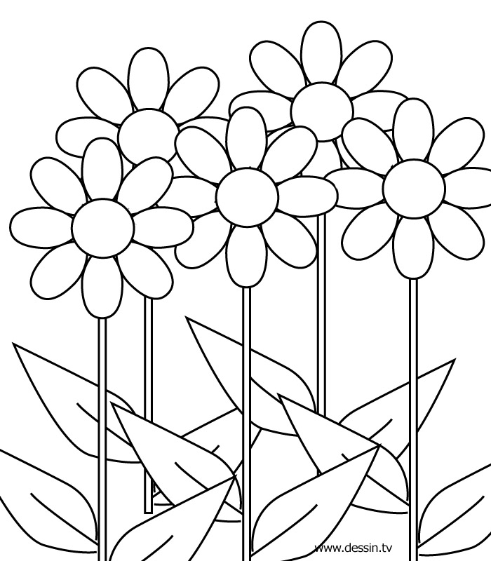 700x800 Excellent Picture Of Flowers To Color Book Des