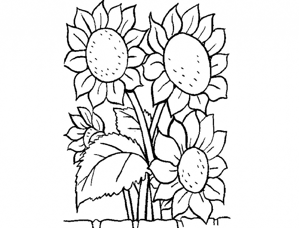 1024x781 Beautiful Flowers Drawings Kids Flowers Coloring Pages