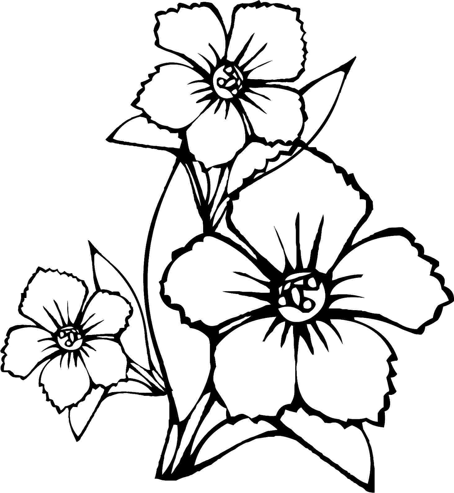 1464x1588 Three Flowers Coloring Pages For Kids Luxury Flowers Drawing Pages