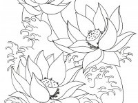 Flowers Drawing Images