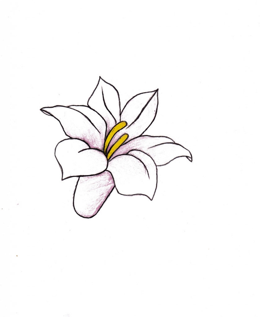 840x1024 Drawings Of Different Flowers Nice Flower Images Flower Drawing