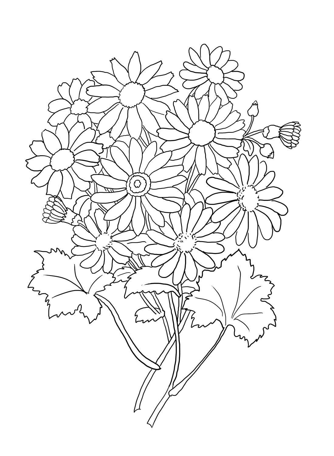 1099x1501 Flower Coloring Pages