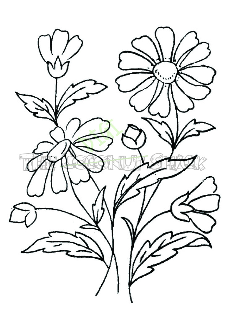 774x1035 Bouquets Sketch Easy Bouquet Of Flowers Drawing Flower Bunch (774