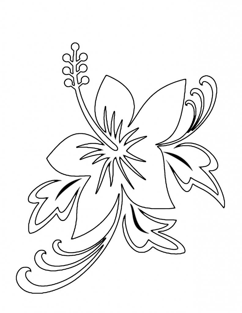 791x1024 Hawaiian Flowers Drawing