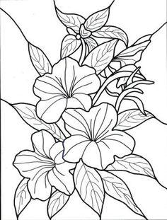 236x311 Flowers Drawing