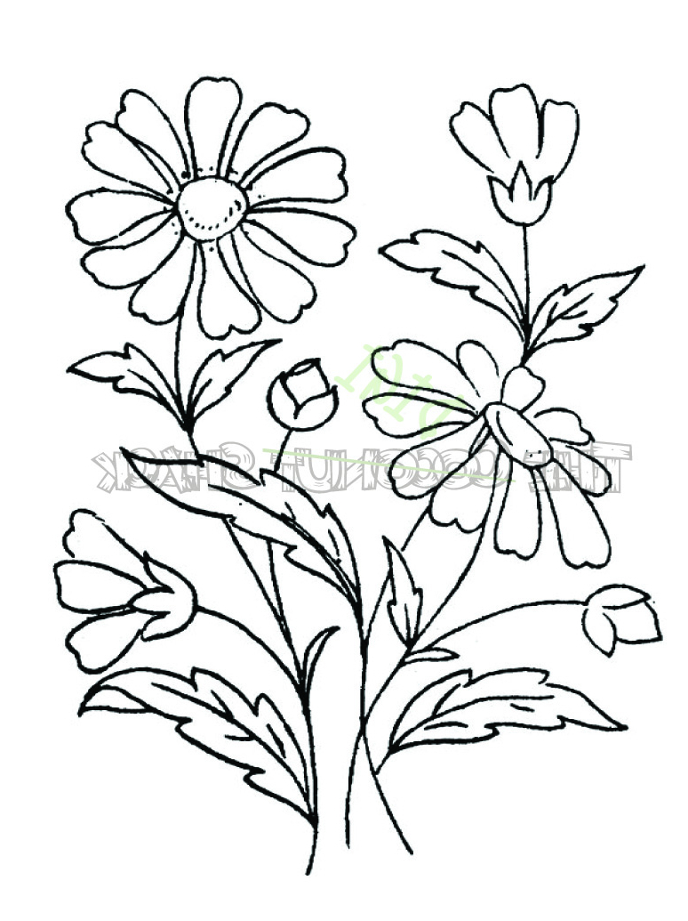 774x1035 Bunch Of Flowers Drawing