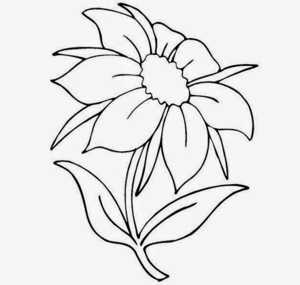 1024x972 Flower Drawing In Pencil For Kids Pencil Sketch Of Flower Vase