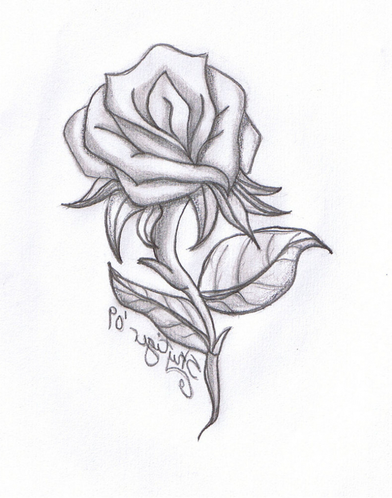 807x1024 Simple Pencil Sketch Of Flowers Simple Drawing Flowers With Pencil