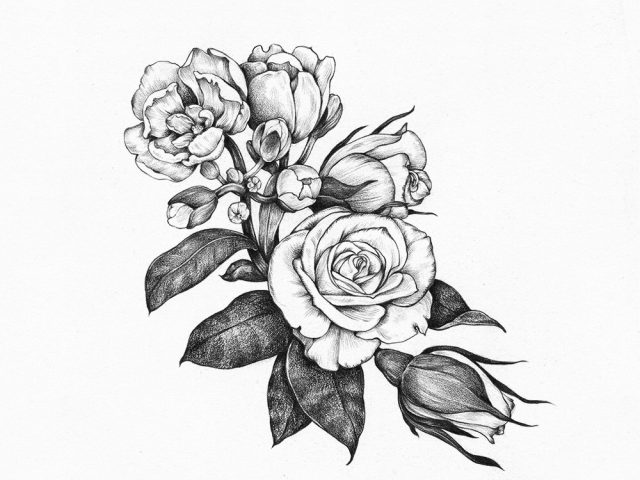 640x480 Drawings Of Flowers Tumblr