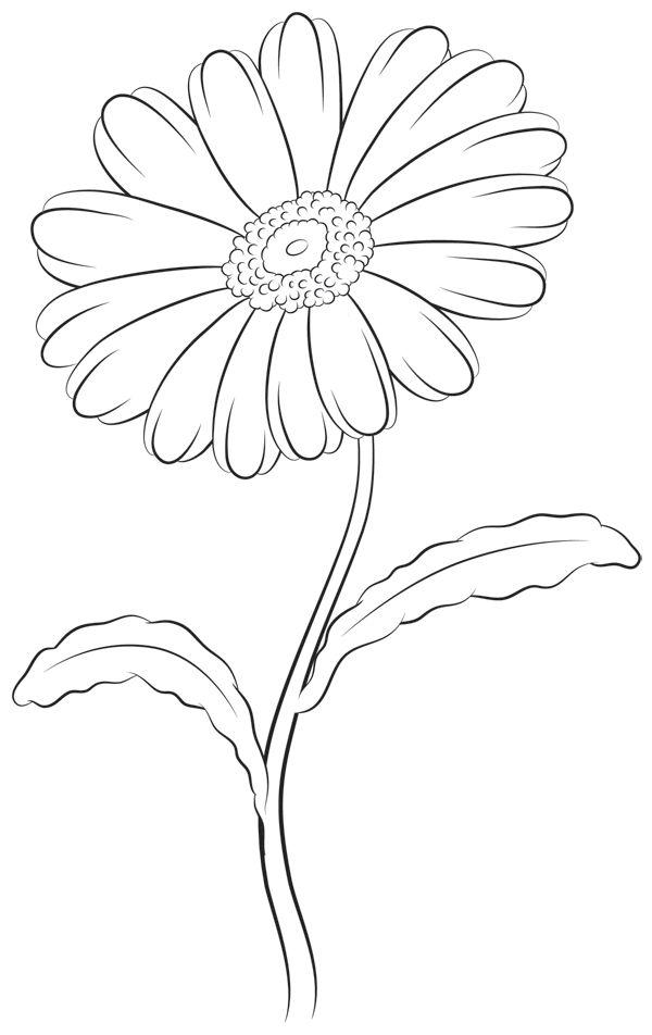 600x952 Drawn Line Art Unique Flower