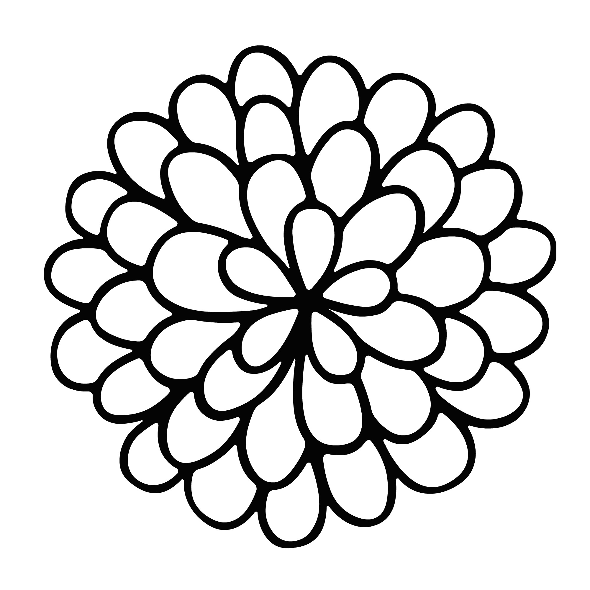 2000x2000 Marigold Flower Drawing Easy Sketch Coloring Page View Larger