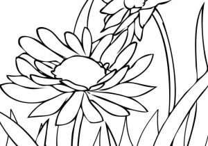 300x210 The Images Collection Of Coloring Spring Drawings Easy Pages