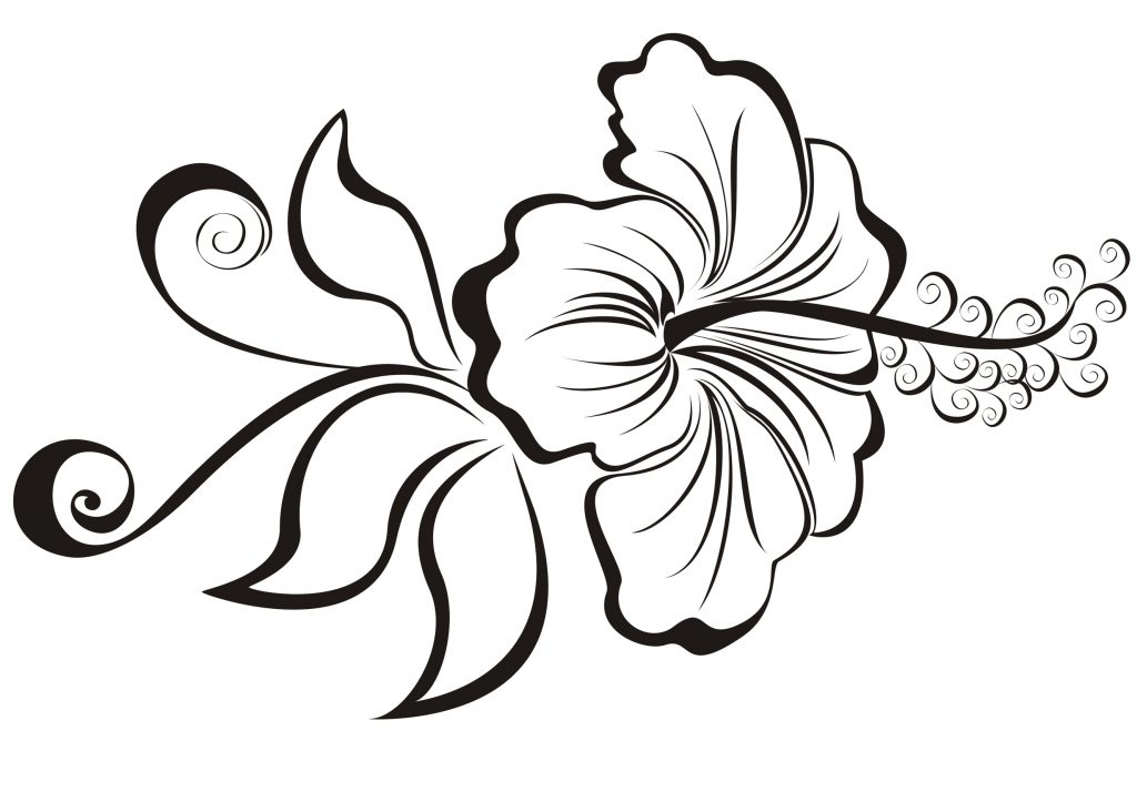 1024x723 Cool Easy Flowers To Draw Coloring Pages Decorative Cool Flowers