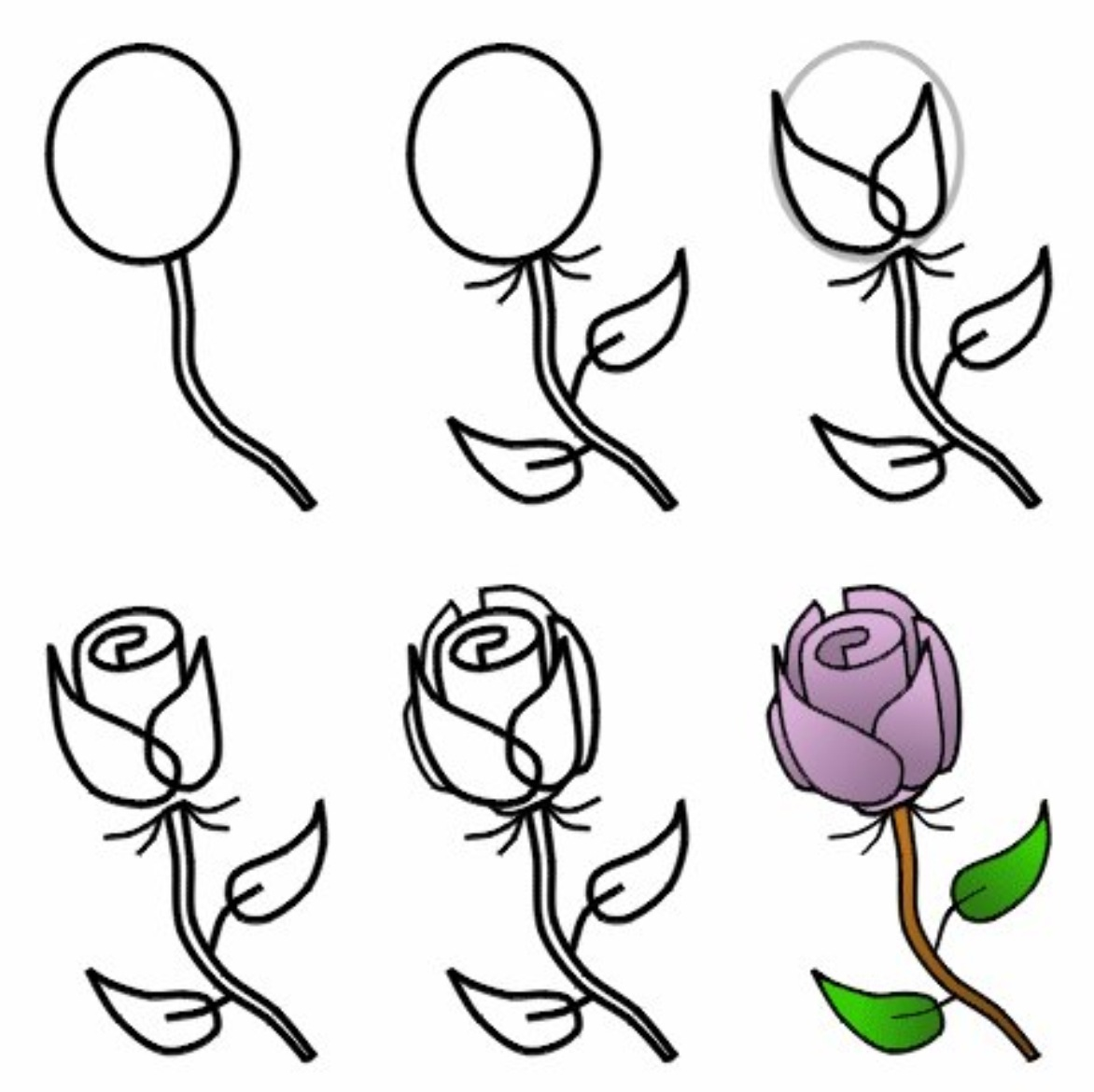 1172x1170 Drawing How To Draw A Rose Flower With How To Draw A Rose
