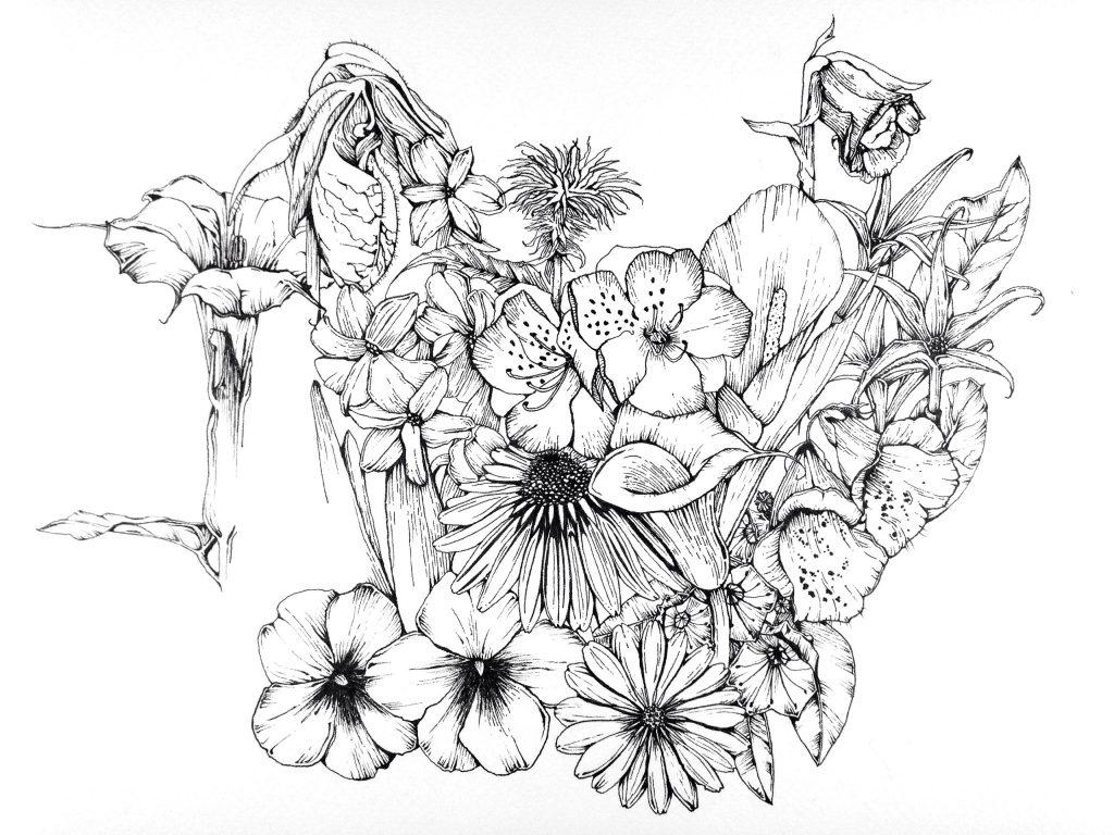 1024x768 February Flower Drawing Challenge Moongirl Art
