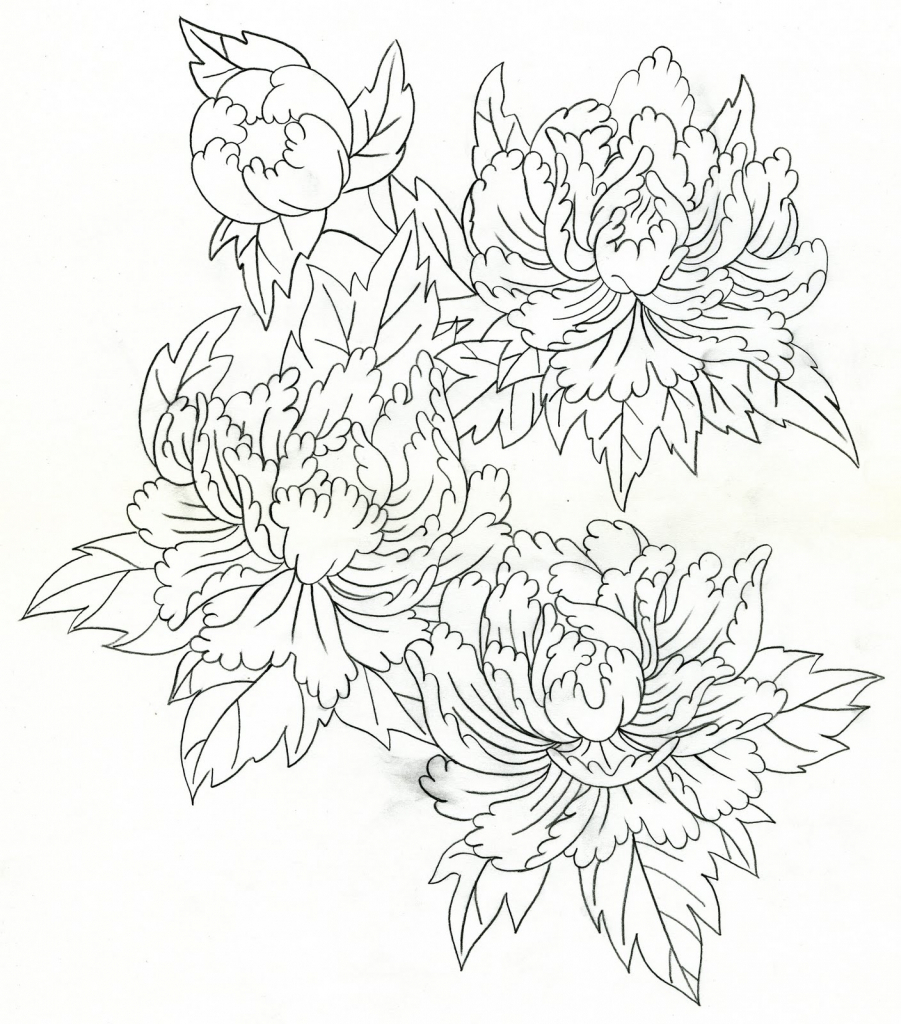 901x1024 Japanese Flowers Drawing