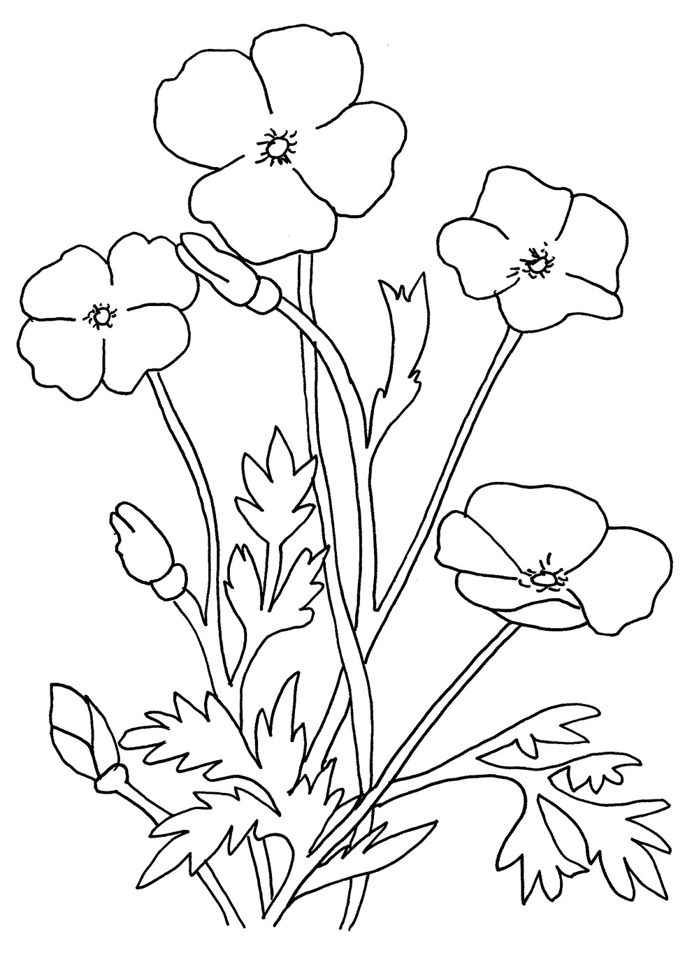 1000x1367 Flowers Drawing For Kids