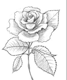 236x281 Drawn Clock Flower Opening