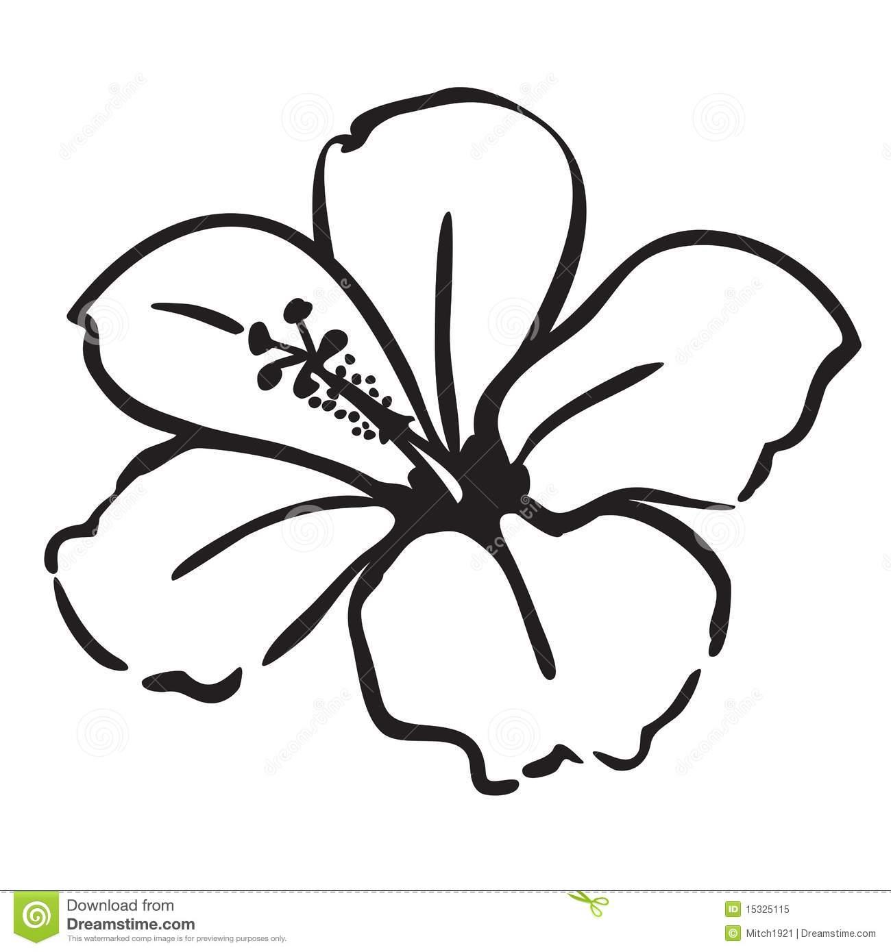 1300x1390 Hawaiian Flower Drawing