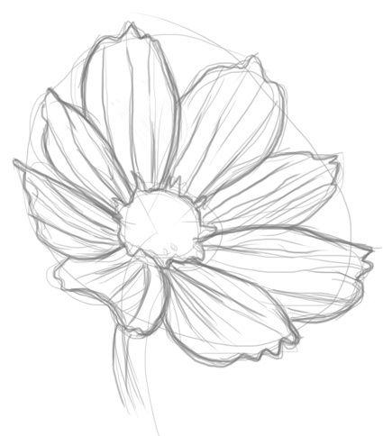 425x484 Realistic Flowers To Draw