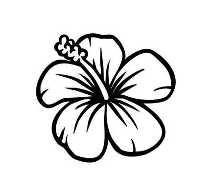 431x399 Simple Flowers Drawings Best 25 Simple Flower Drawing Ideas
