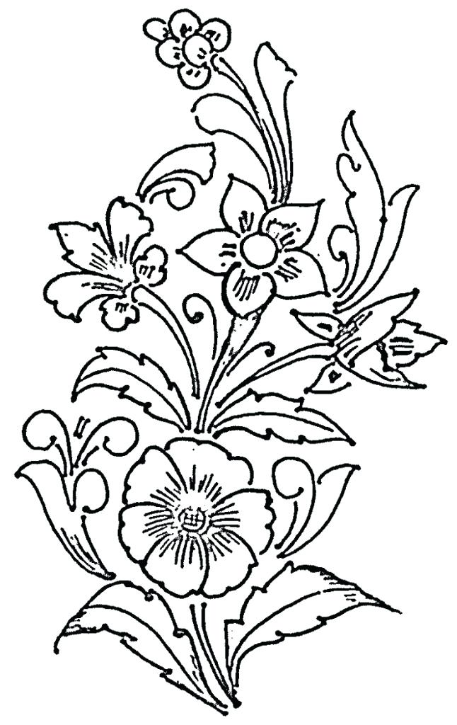 646x1024 Flowers Drawing Drawing Of A Flower 6 Nice Design Draw Flower Step