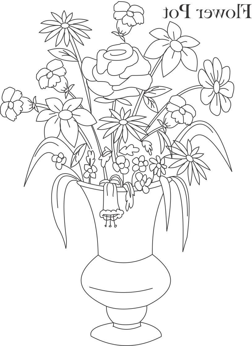 819x1126 Flower Pot With Flowers Drawing A Photo Of Pencil Sketches