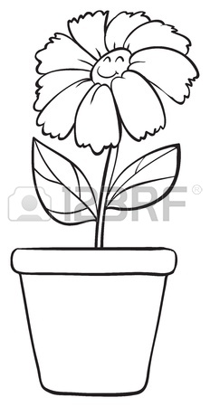 232x450 Illustration Of A Flower Sketch On White Background Royalty Free