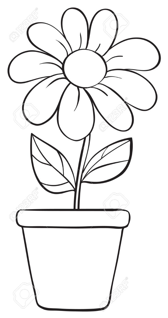 Flowers In A Pot Drawing At Getdrawings Free For Personal Use