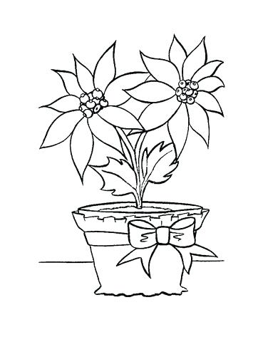 355x480 Poinsettia Coloring Pages Red Color The Flower Poinsettia With Pot