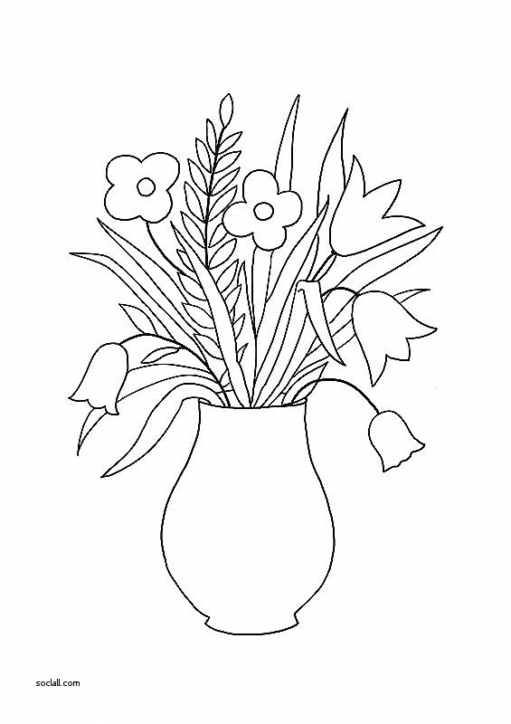 565x800 Fresh Sketch Of Flower Vase