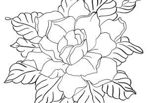 300x210 Hard Drawings Of Flowers